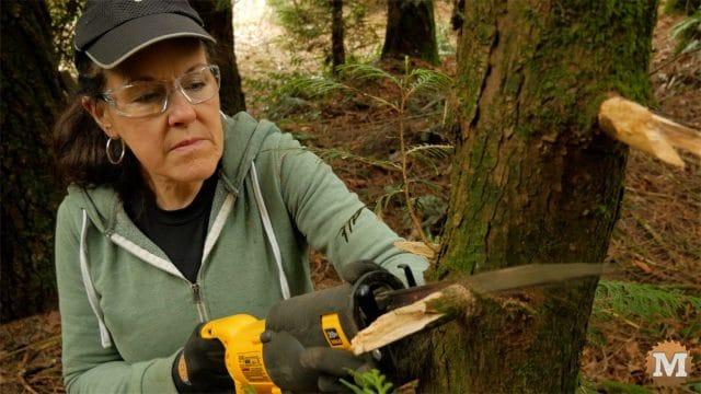 Cutting cedar branches with a recip saw