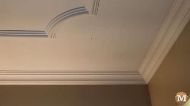 Decorative Ceiling Trim - ash vacuum review