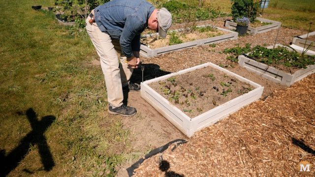 remove a panels from a CSA concrete garden box