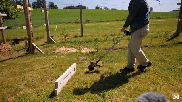 simple durability test of concrete with a grass or weed line trimmer